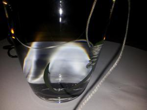Einzelhaken in Glas