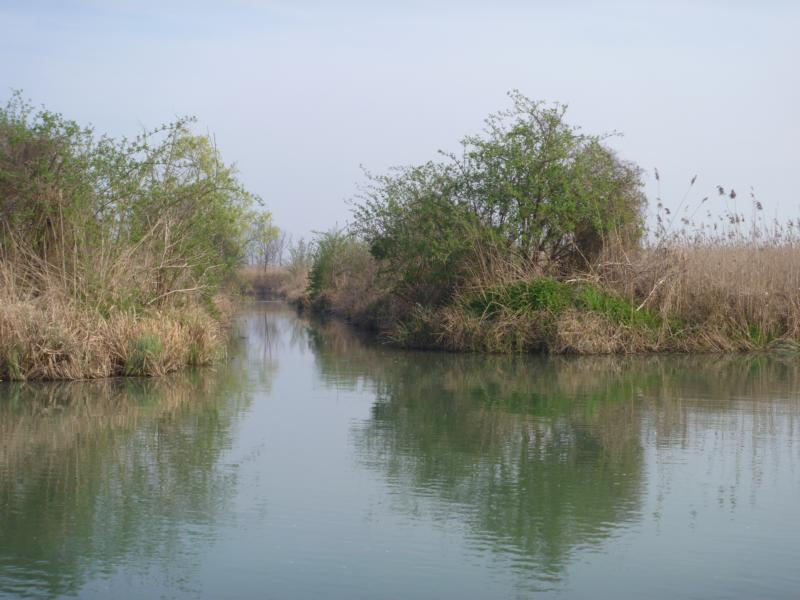 Waller Hotspot Kanal