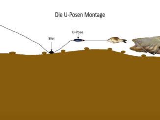 Unterwasserposen Montage