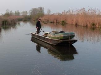 Boot zum Wallerangeln