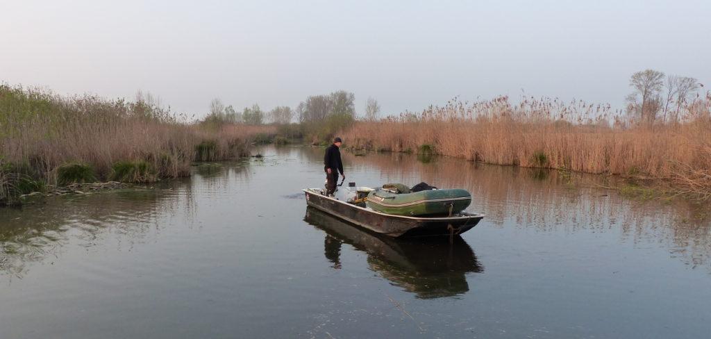 Das Boot zum Welsangeln