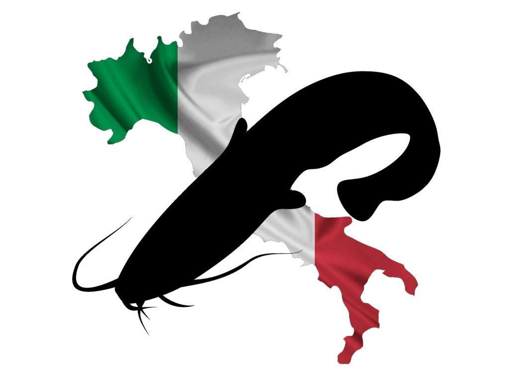 wallerangeln-italien-wallercamp