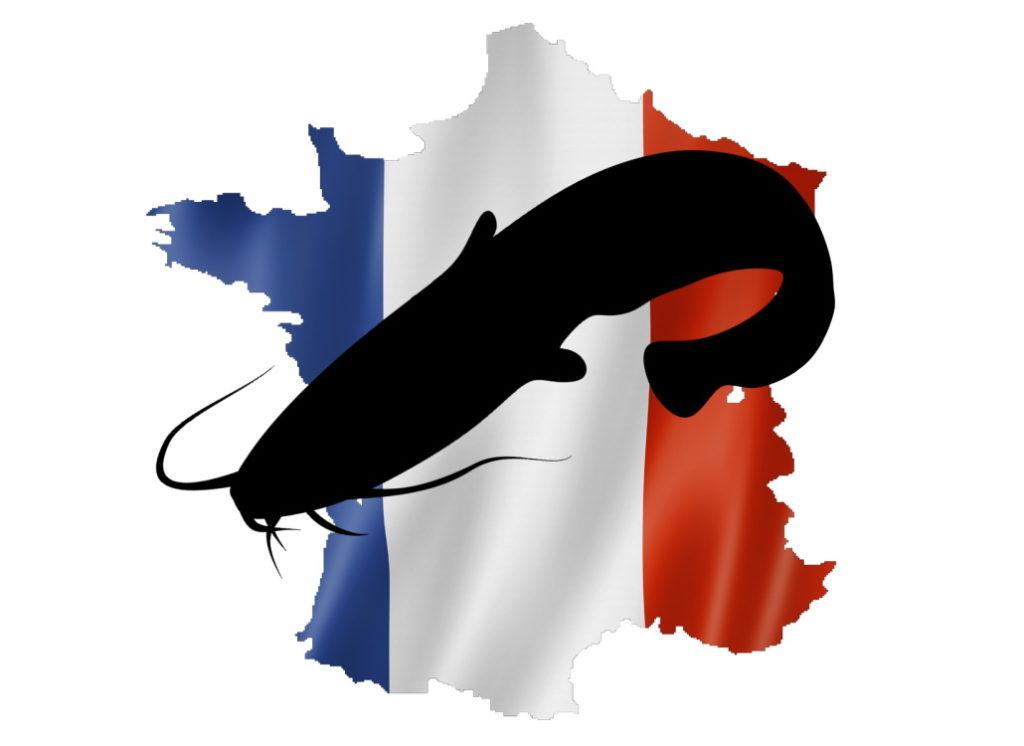 Wallerangeln in Frankreich