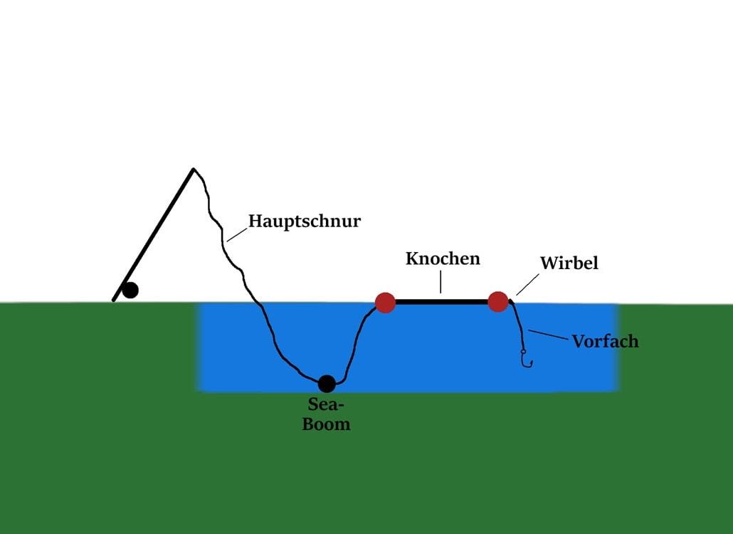 aufbau_knochenmontage_wallerangeln_welsangeln_thumb